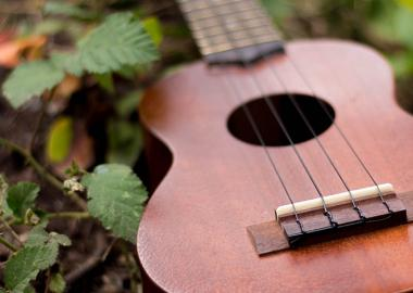 A brown ukulele lies among leaves on the ground